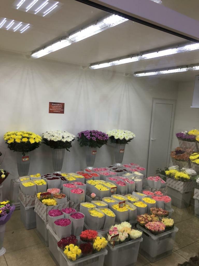 Оптовые базы цветов в москвы и подмосковья, празднику урожая заказать
