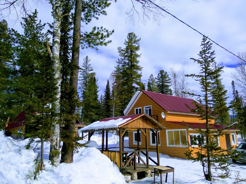 Дом в кедрах