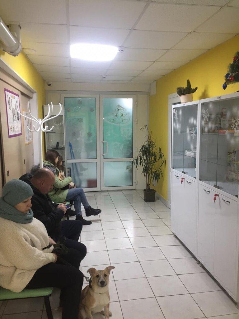 ветеринарная клиника — Ветко — Тула, фото №4