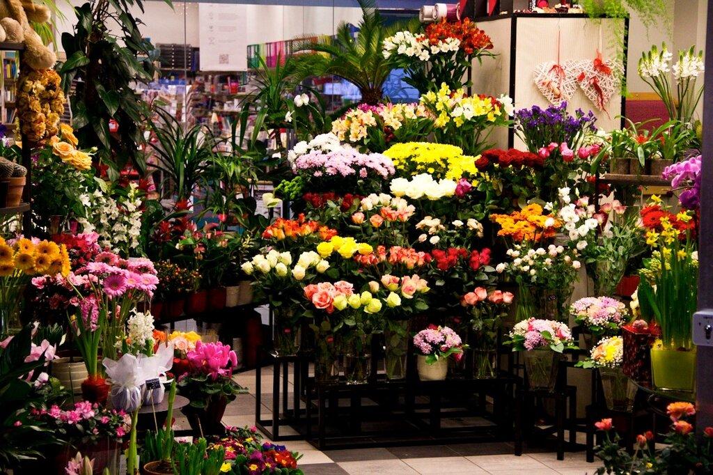 Цветов доставкой, все магазин цветов в москва недорого