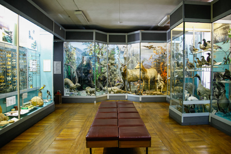 Музеи владивостока картинка