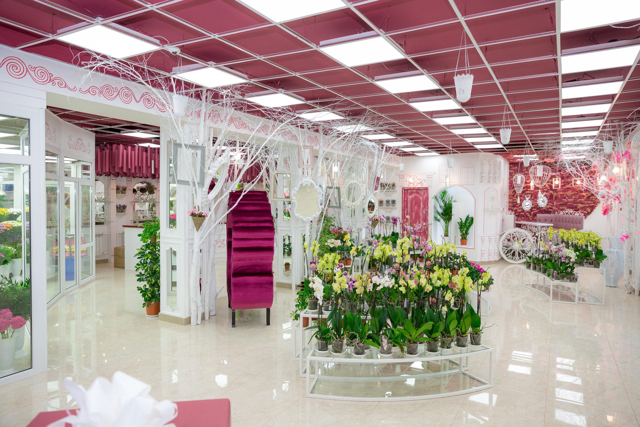 Орхидей магазин цветов киев на луговой