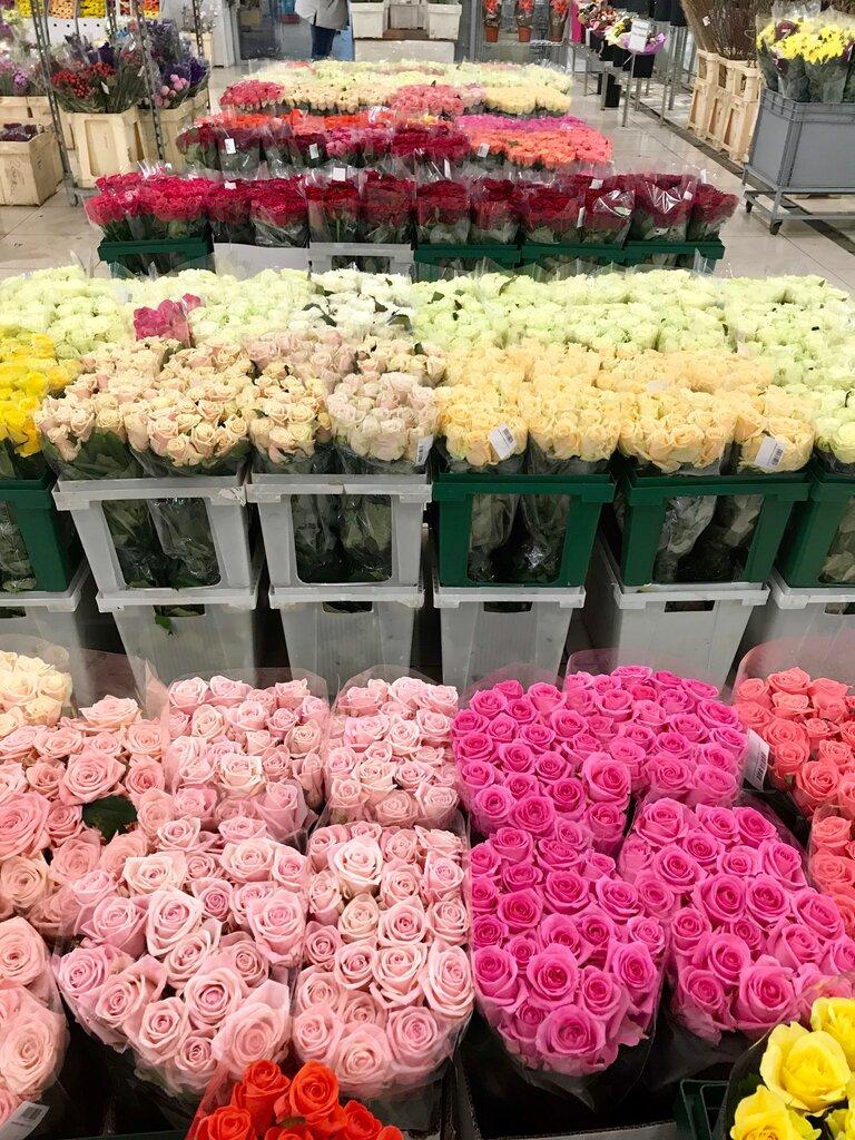 Калиновка-цветы оптом