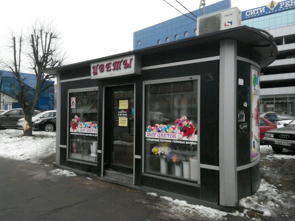 Калининград цветы интернет магазины телефонов, необычные букеты