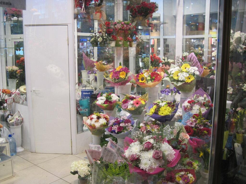 Магазин цветов в мурманске сайт, цветов калуге маки