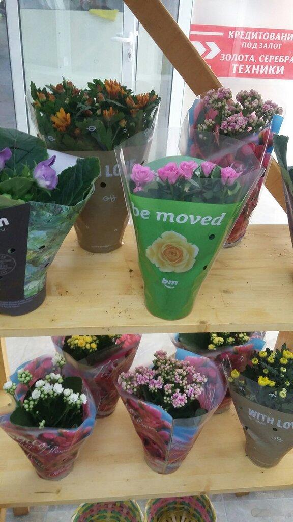 Доставка цветы симферополь отзывы москва