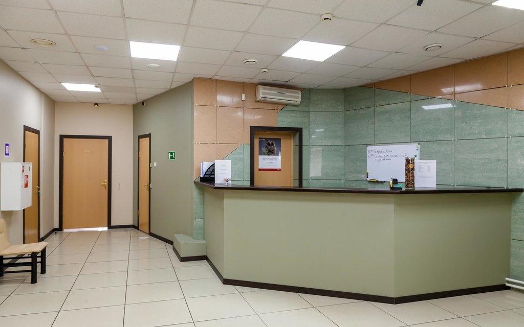 ветеринарная клиника — Эпиона — Москва, фото №1