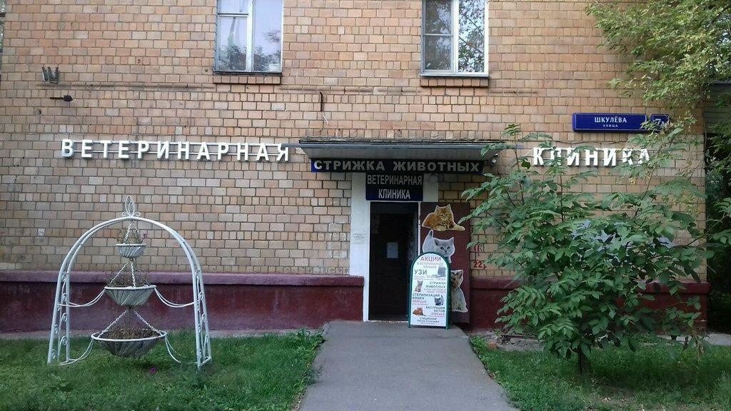 ветеринарная клиника — ВетерОК — Москва, фото №1