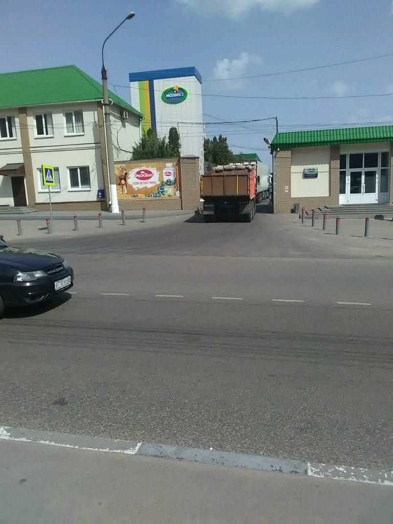 производство продуктов питания — Молвест — Воронеж, фото №1
