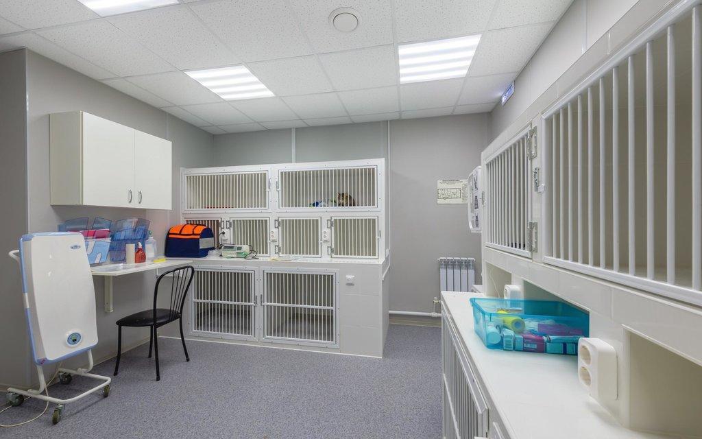 ветеринарная клиника — Dr. Pet's — Санкт-Петербург, фото №3
