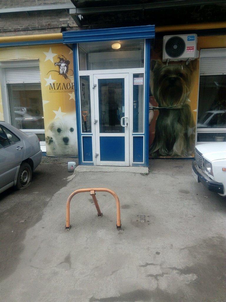 зоосалон, зоопарикмахерская — Милорд — Самара, фото №4