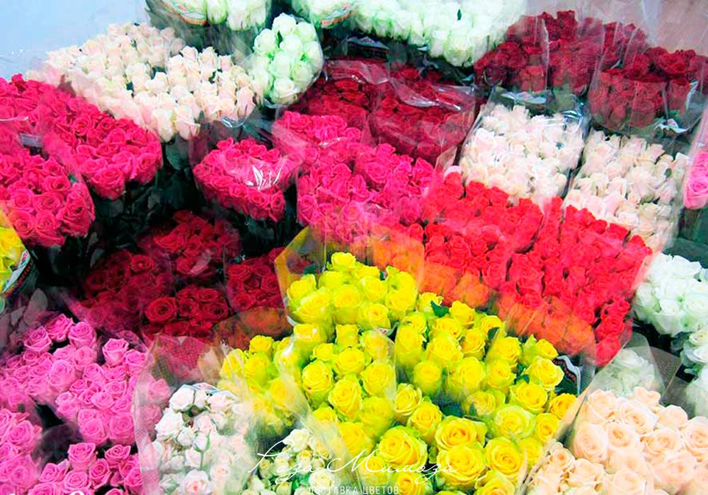 Продажа цветов оптом и цены, букеты оранжевого цвета