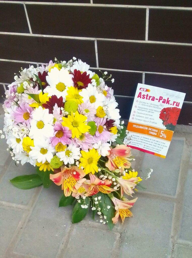 Купить цветы в волгограде круглосуточно, цветы комсомольская