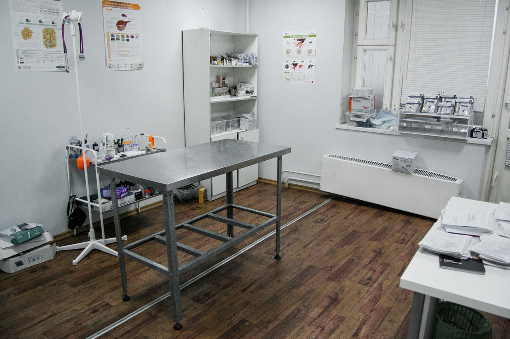 ветеринарная клиника — Био-Вет — Москва, фото №8