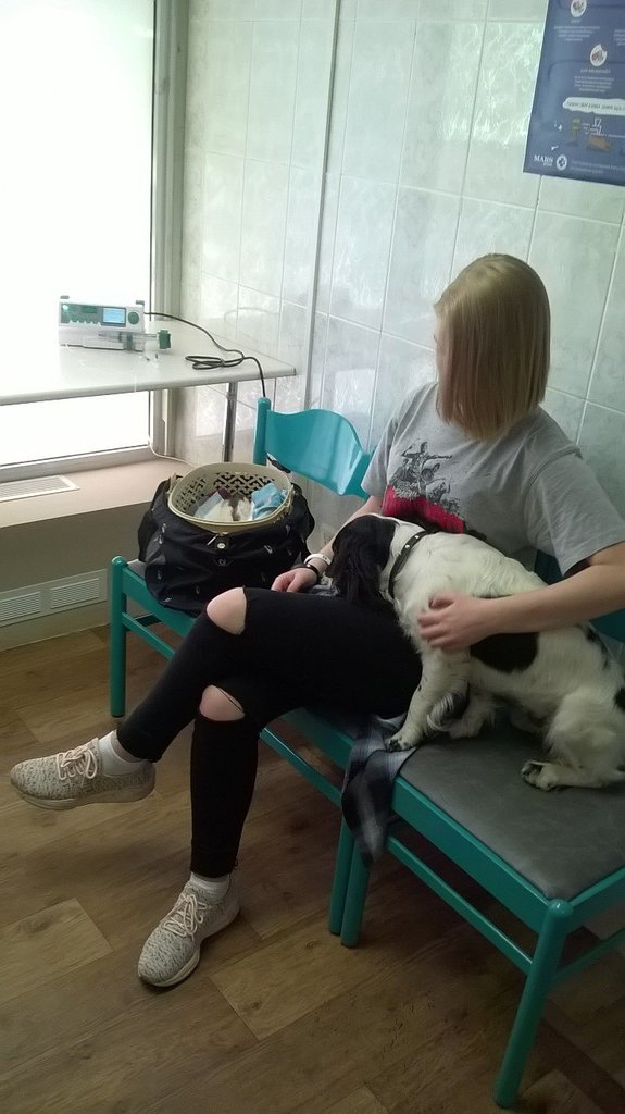 ветеринарная клиника — Единорог — Москва, фото №2