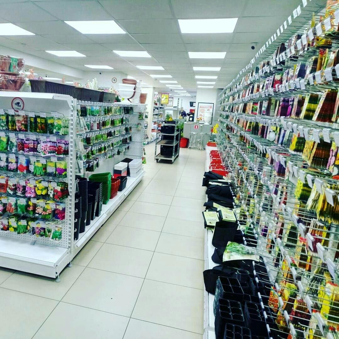 Магазин Огород Маркет На Бухарестской Каталог Товаров