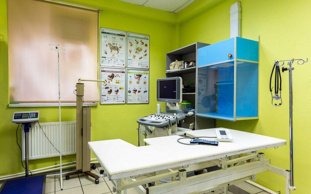 ветеринарная клиника — ЗооАкадемия — Москва, фото №2