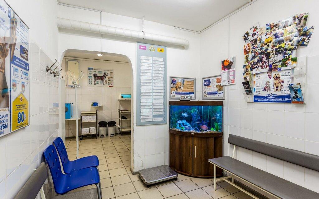 ветеринарная клиника — ЗооАкадемия — Москва, фото №9