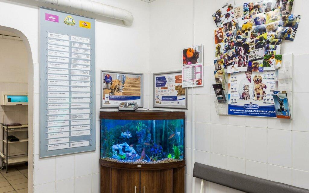 ветеринарная клиника — ЗооАкадемия — Москва, фото №8