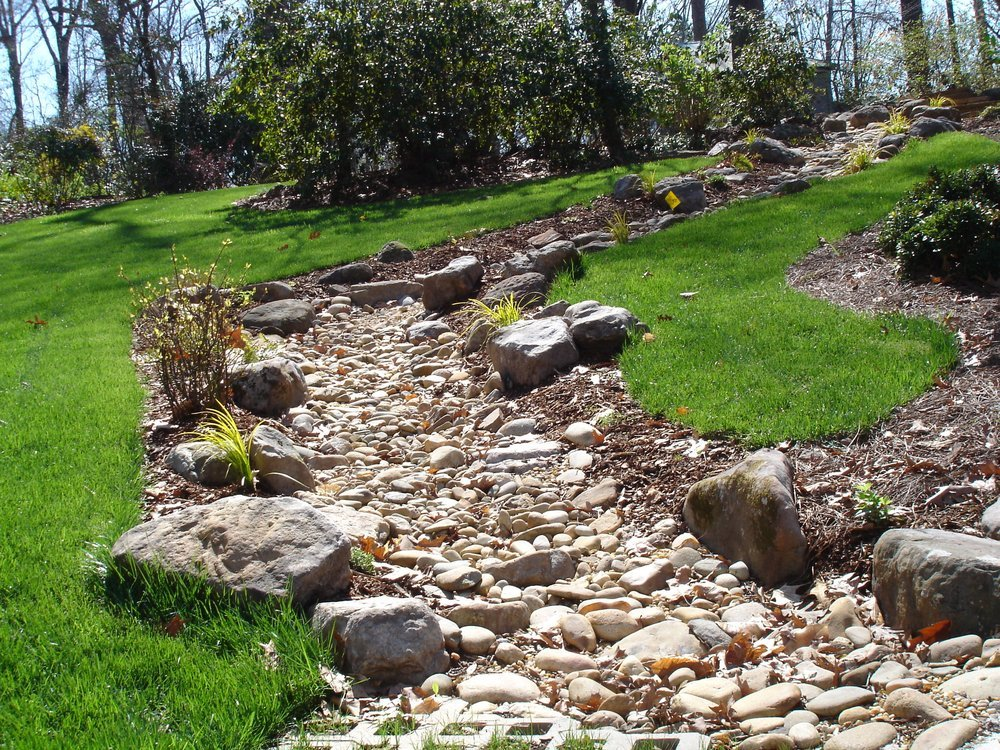 плавающая сухие реки из камней своими руками фотогалерея сорта