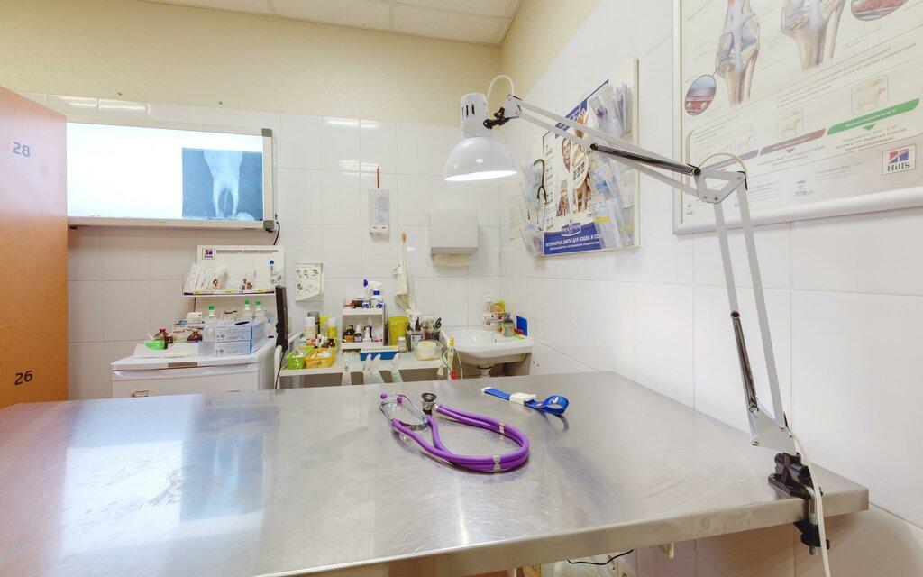 ветеринарная клиника — Веста — Санкт-Петербург, фото №9
