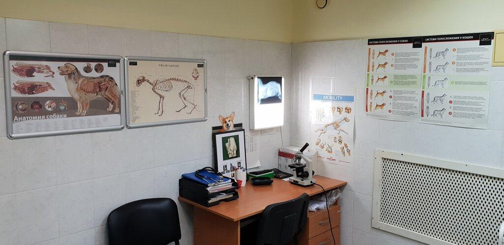 ветеринарная клиника — Ветеринарный госпиталь Флагман — Санкт-Петербург, фото №8