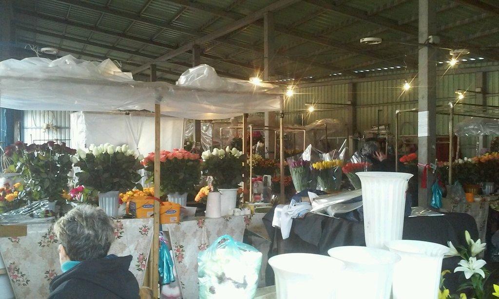 цветочные краснодарские рынки фото шатере оптимально прислать