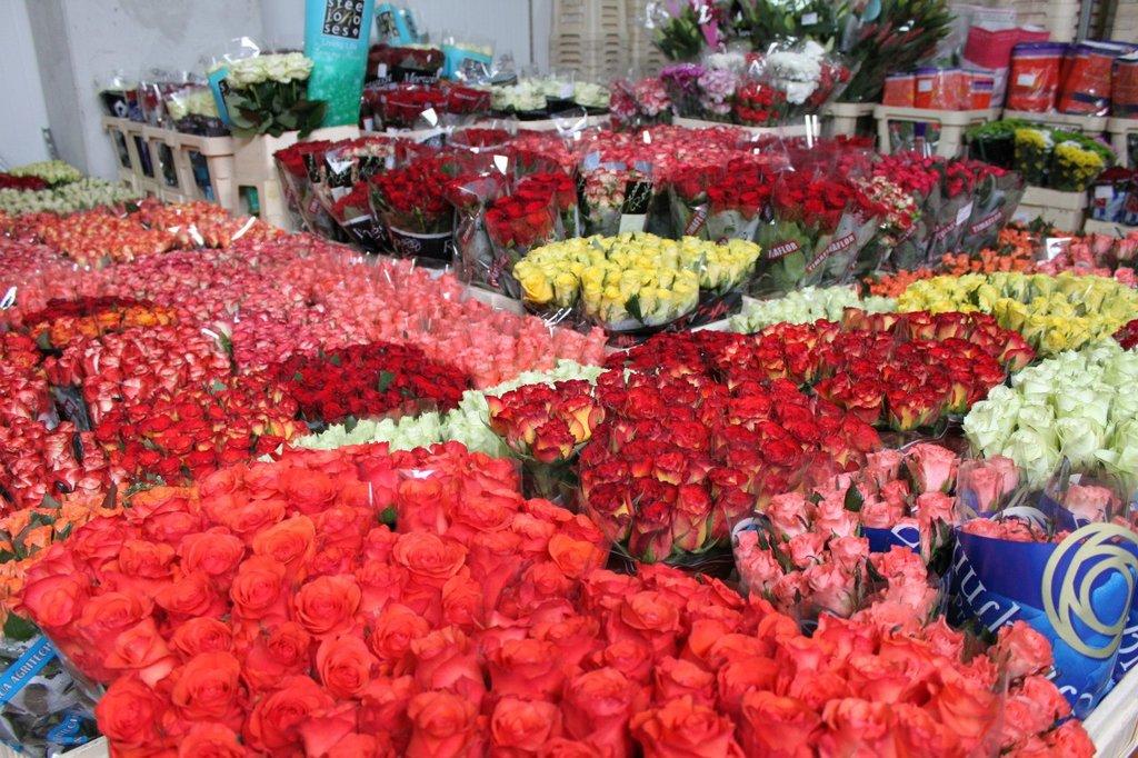 Ищем оптовых поставщиков цветов, букеты тюльпана