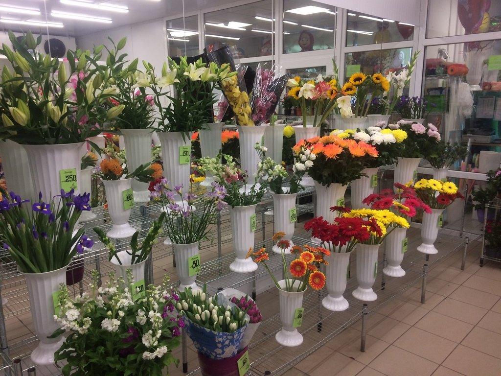 Цветы оптовая продажа санкт петербург, цветов твой