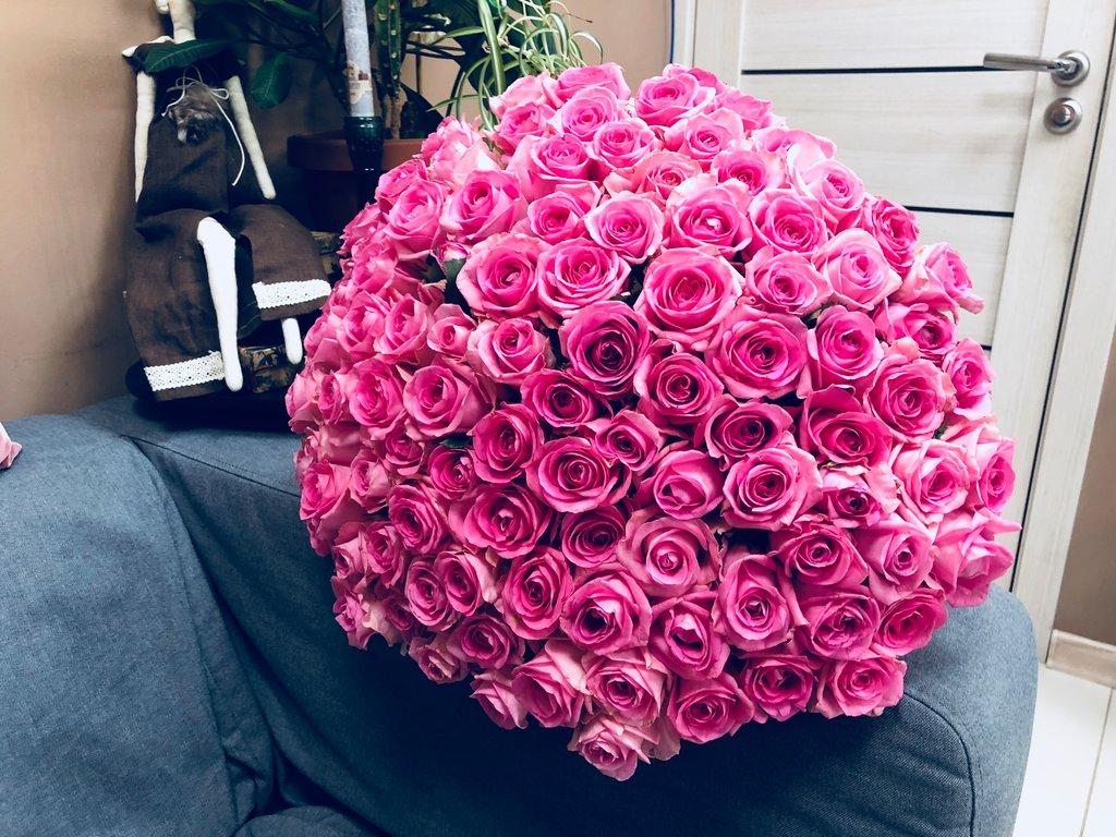 огромные цветок картинки