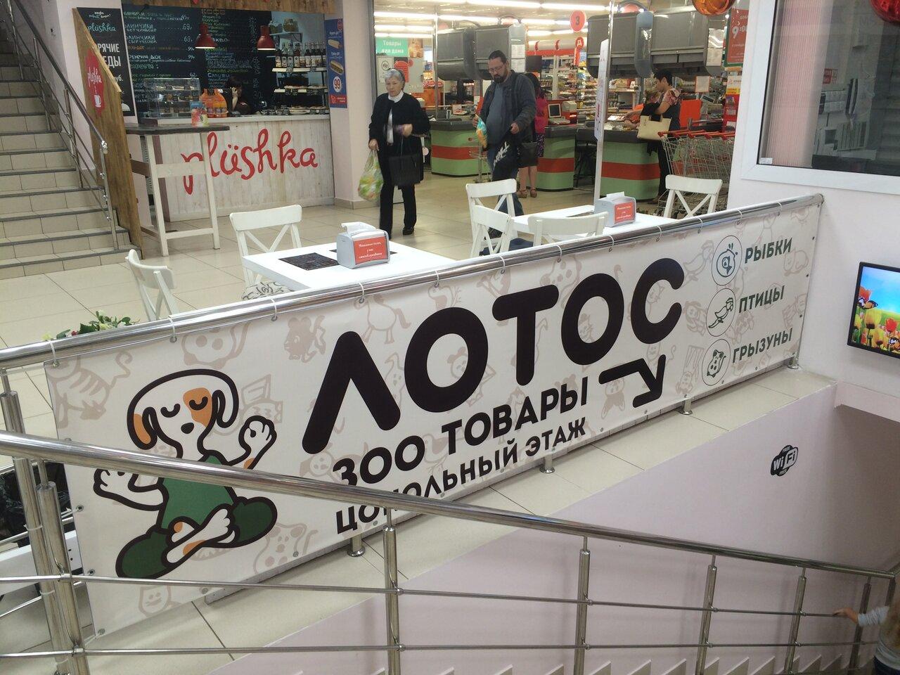 Магазин Лотос Смоленск Официальный Сайт