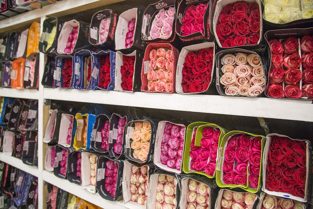 Доставка, цветы оптом с голландии