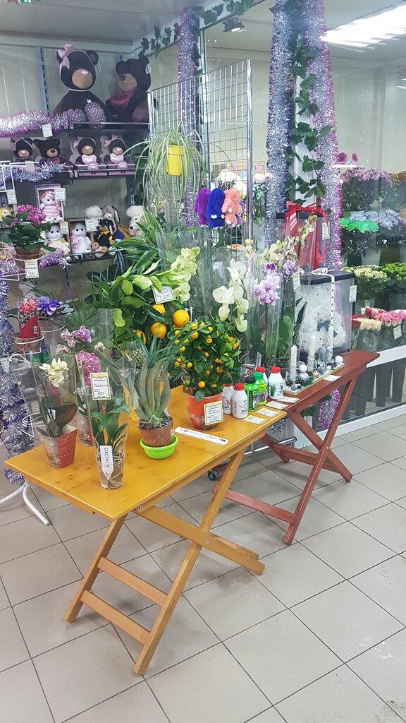 Доставка цветов в домодедово в определенное время, цветы районе