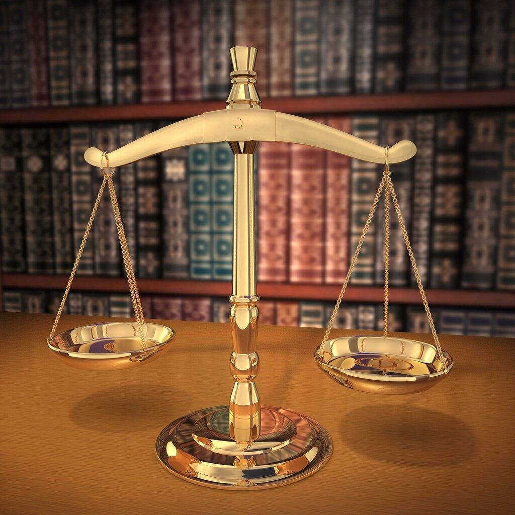 уголовно правовая деятельность