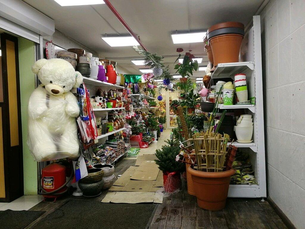 Магазин среди цветов в москве адрес, цветы подарить аллергику