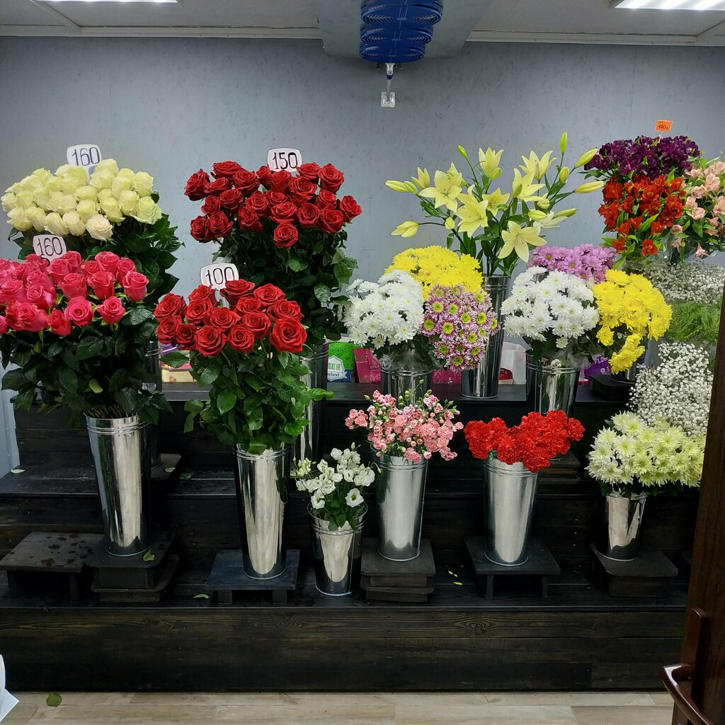 Магазин цветов на 8 марта в москве бизнес план, новосибирск сфинкс доставка