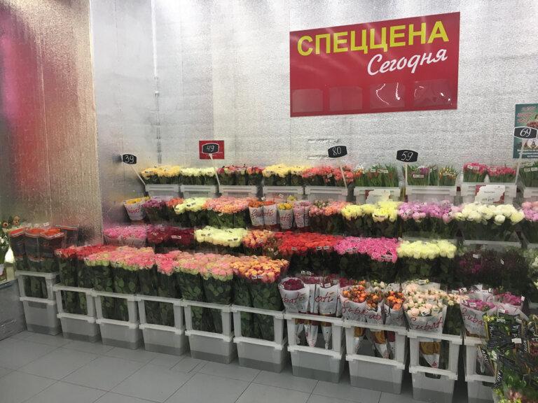Невесты, цветы оптом на войковской, мосцветторг