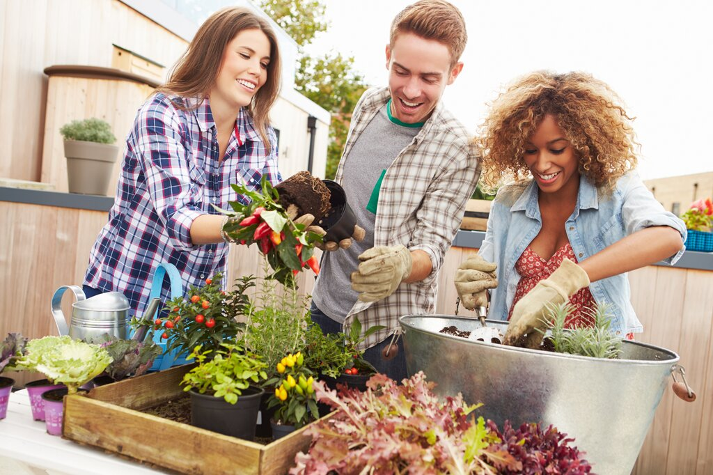 dating singles plant a garden together