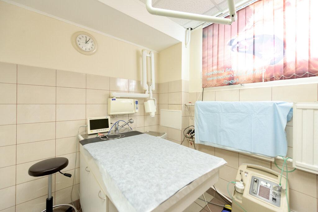ветеринарная клиника — Городской Ветеринарный Онкологический центр Прайд — Санкт-Петербург, фото №9