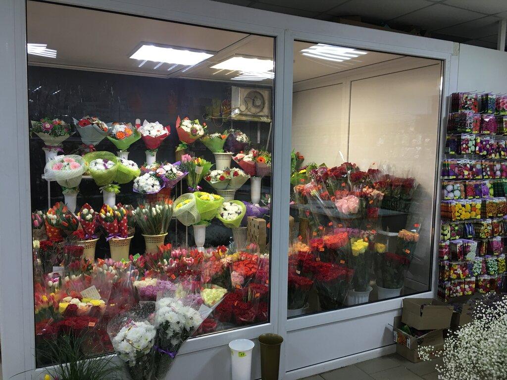 Магазин цветов ип яковлева омск, доставка ужгород заказ