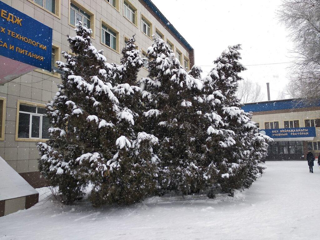 колледж — Алматинский областной колледж инновационных технологий в сфере сервиса и питания — Алматы, фото №1