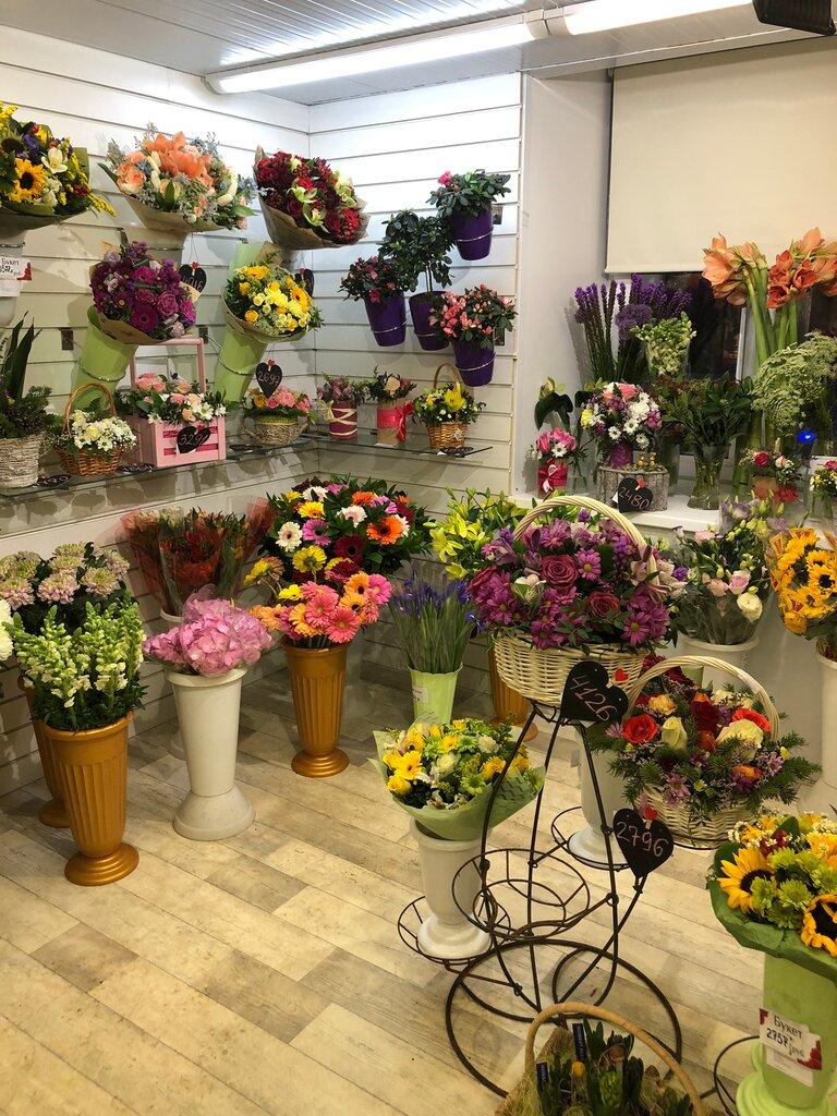 Все Цвета Цветов Магазин