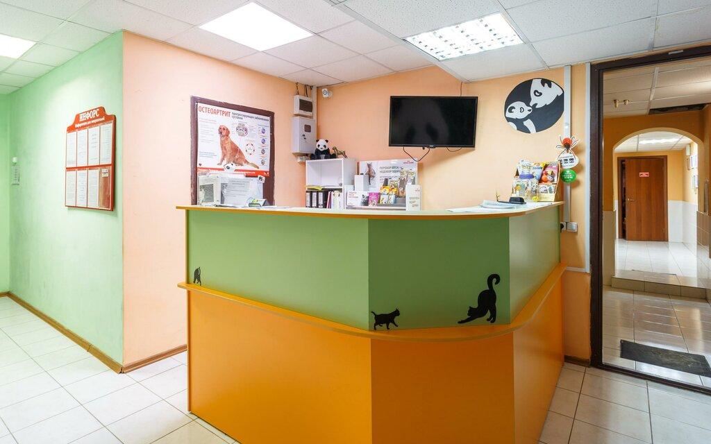 veterinary clinic — Panda — Kazan, photo 1
