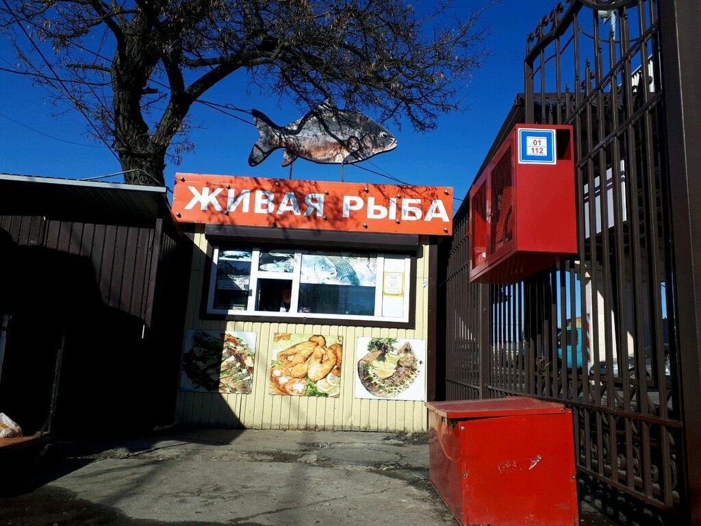Рыбный Магазин Белгород