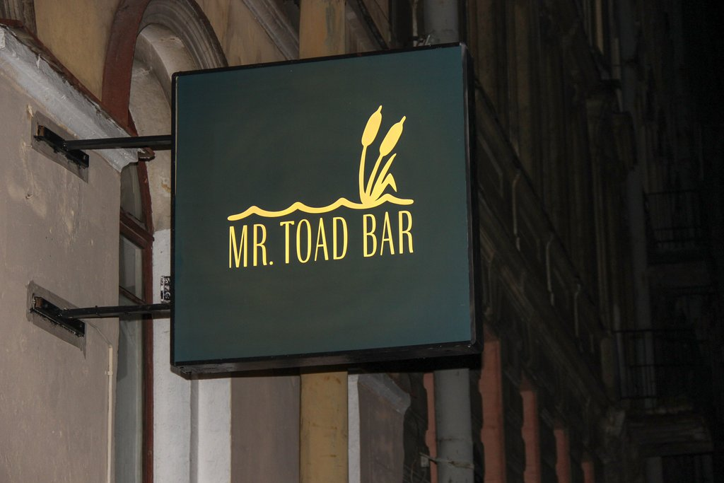 pub, bar — Mr Toad Bar — Saint Petersburg, фото №1