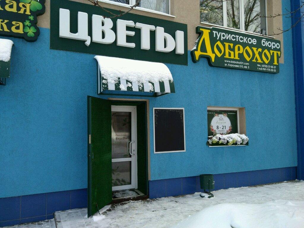 Магазин сезон цветов белгород, доставка