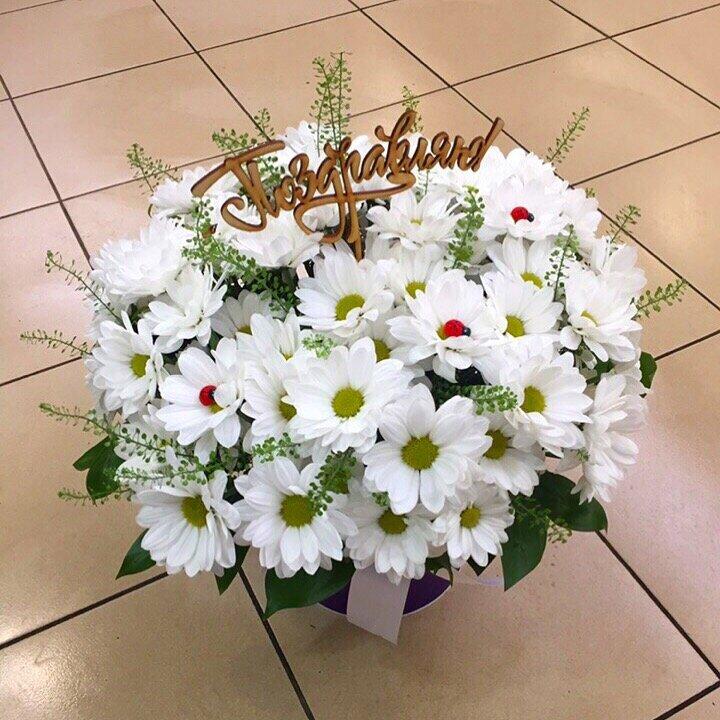 Цветы кампанула, купить цветы дешевле в туле