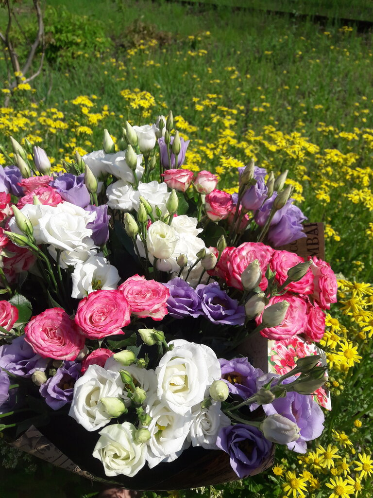 Цветов рублей, доставка цветов донецк днр салон фрезия