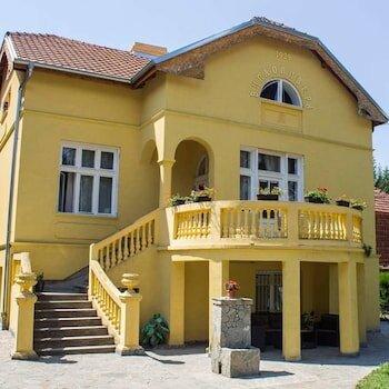 Vila Olivera Niska Banja