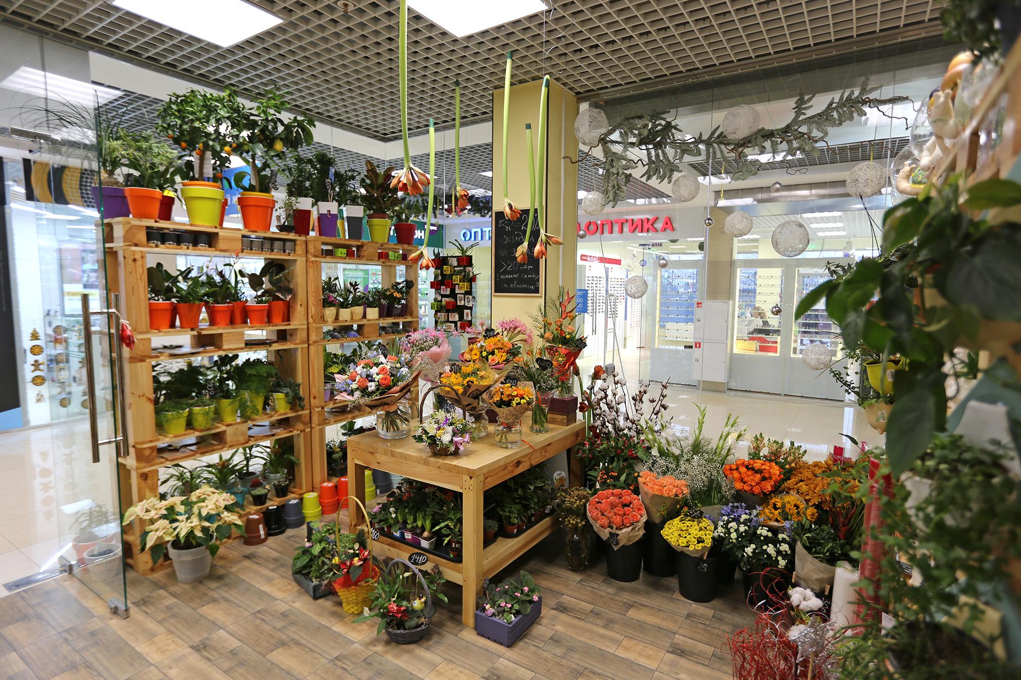 Цветы балашиха цены